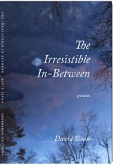 The Irresistible In-Between by David Slaon